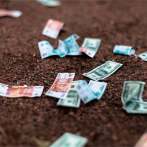 15 советов, как сэкономить деньги