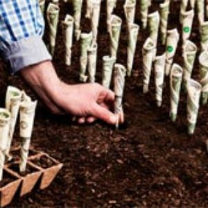 15 инструментов, куда выгодно вложить деньги сегодня