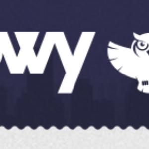 Owy io – отзывы и обзор нового проекта