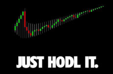 JUST HODL IT!