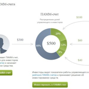Инвестиционный проект на базе  памм счета /beta/